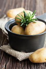 Kartoffeln und Rosmarin