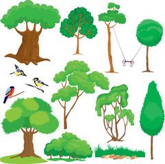 Set of trees, bushes and birds isolated on white background.
