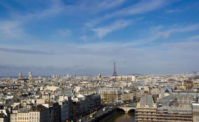 Paris skyline from Notre Dame
