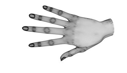 Mano illustrazione anatomia pose disegno