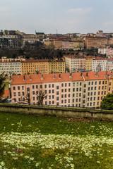 Vue sur la Croix-Rousse à Lyon et les Primevères