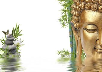 tête de Bouddha au bord de l'eau