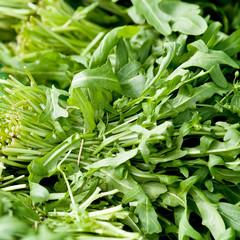 Frischer grüner Rucola Salat an einem Marktstand