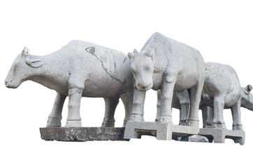 Buffalo statue with isolated background