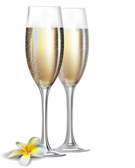 Two champagne glasses and flower isolated on white background