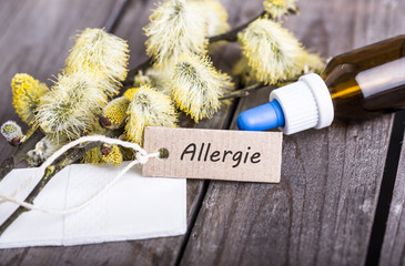 allergiezeit
