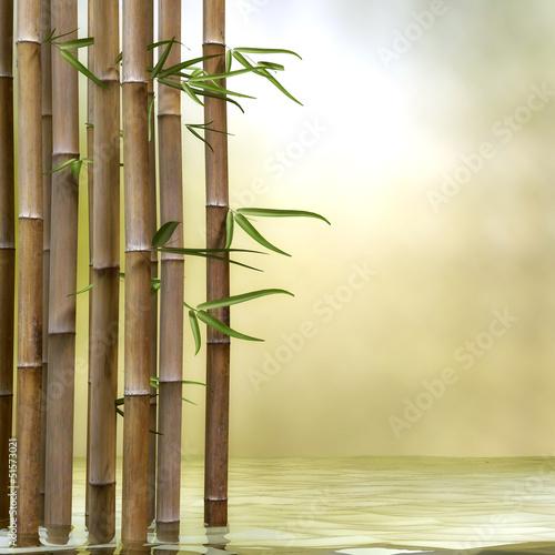 Bambus im wasser stockfotos und lizenzfreie bilder auf bild 51573021 - Bambus schiebevorhang ...