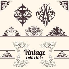 Vector set: vintage calligraphic design elements.