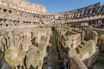 Fototapete - Internal of Colosseum