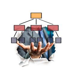 Hand präsentiert Organigramm