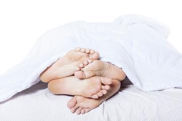 Close-up of feet cuddling