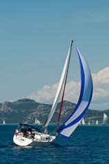 Sailing boat in the regatta