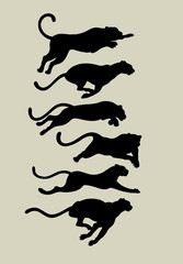 Leopard Running Silhouettes