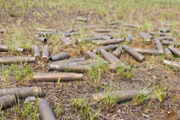 cartridge cases on the grass