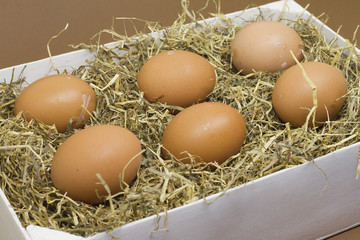 Fresh farm eggs on a white box with hay