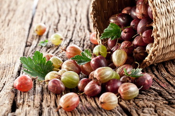 Gooseberries have dropped from the basket