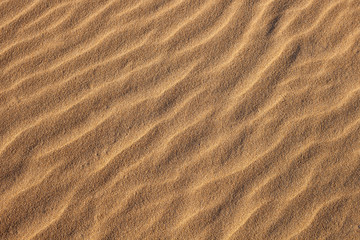 Sand Ripples Horizontal