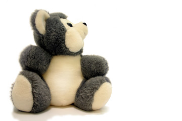 A soft gray teddy bear sitting on a white background