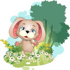 Foto auf Leinwand Hunde puppy on a meadow