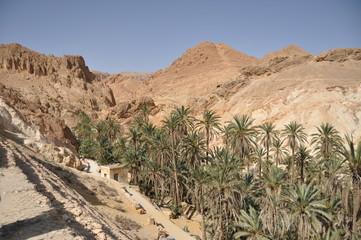 Chebika oasis in southern Tunisia.