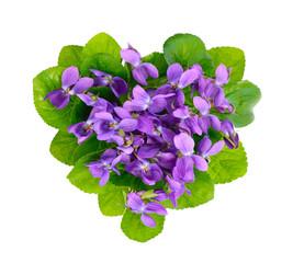 Violets heart.