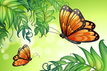 A design with butterflies and plants