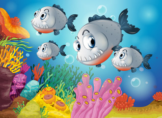 Four gray fishes under the sea