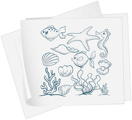 A paper with a drawing of the different underwater species