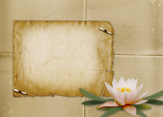 Vintage postcard for invitation with bunch of water lily