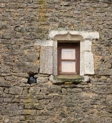 Fenêtre et pigeon - dans le mur en pierre
