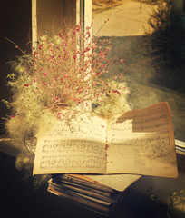 Music books at the window