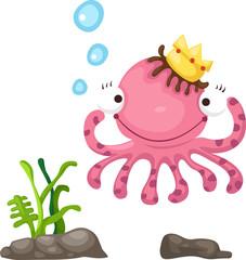 illustration of octopus white background