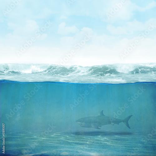 Fototapete Himmel Wasser Hai Hintergrund 3D