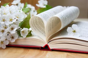 Liebe und Poesie