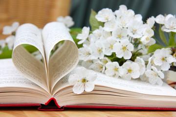 Liebe zur Poesie
