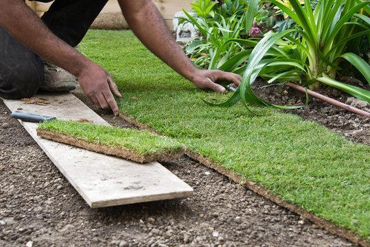 Pose de pelouse en plaque