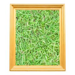 grass in Gold vintage frame