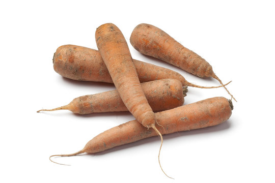 Fresh carrots with sand