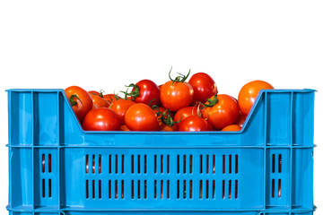 Crate with fresh tomatoes isolated on white