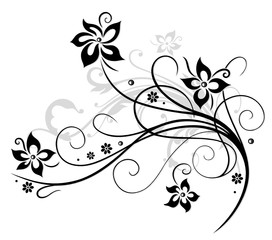 Printed kitchen splashbacks Floral black and white Blume, Blüte, Ranke, schwarz, grau