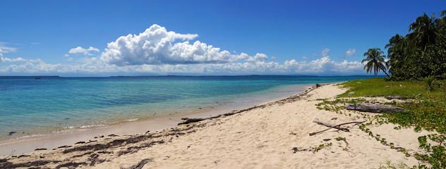Panorama on an unspoiled island beach