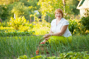 Happy  woman in vegetables garden