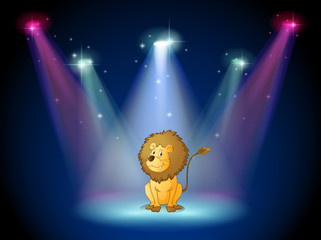 A lion sitting with spotlights