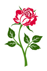 Red rose with stem. Vector illustration.