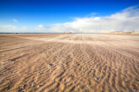 windy beach by North sea