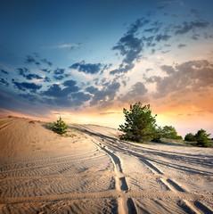 Photo sur Toile Desert de sable Country road in the desert