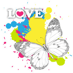 Butterfly on a background with blots. Vector illustration.