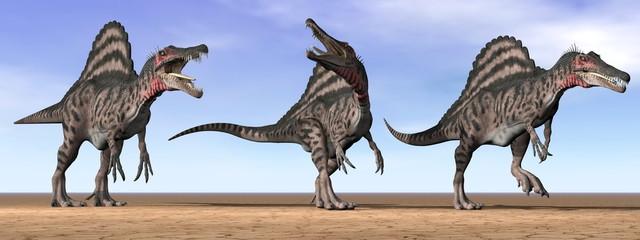 Spinosaurus dinosaurs in the desert - 3D render