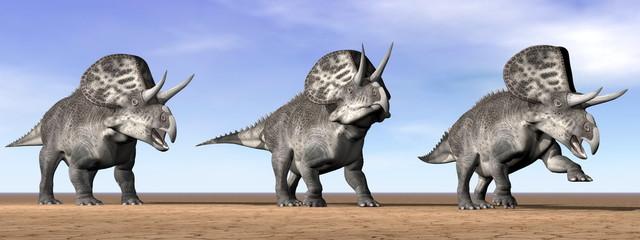 Zuniceratops dinosaurs in the desert - 3D render