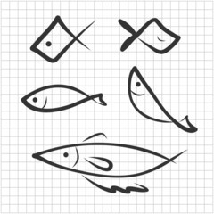 hand drawing icon fish on graph paper